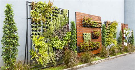Vertical Garden Planting Panel by Creative Tips For Planting A Vertical Garden Capital Gardens