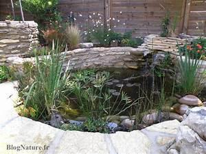 reve de gosse un bassin dans le jardin blognaturefr With quelle plante autour d une piscine 13 les plantes aquatiques pour bassin de jardin
