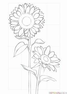 Simple Sunflower Drawing | www.pixshark.com - Images ...