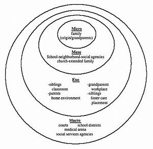 Pregnancy Essay Steps In Writing Library Research Paper Pregnancy  Pregnancy Essay Introductions