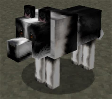 hd dog wolf textures resource packs mapping