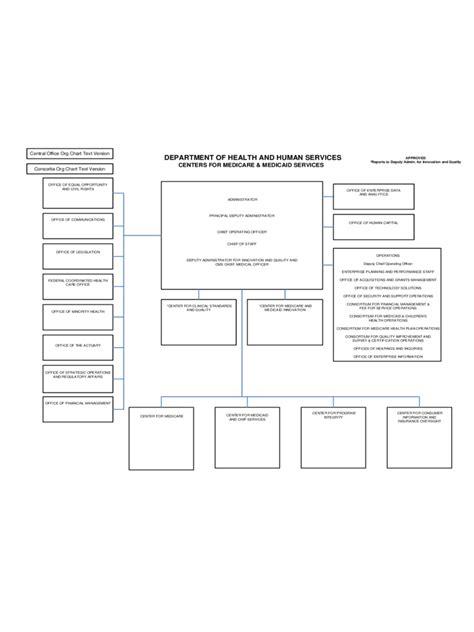 CMS Organizational Chart - 1 Free Templates in PDF, Word