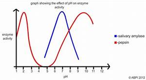 The Effect Of Ph On An Enzyme Controlled Reaction By