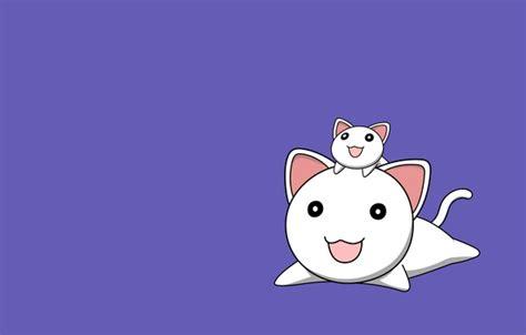 josei anime eng sub wallpaper minimalism two cats background smile lilac