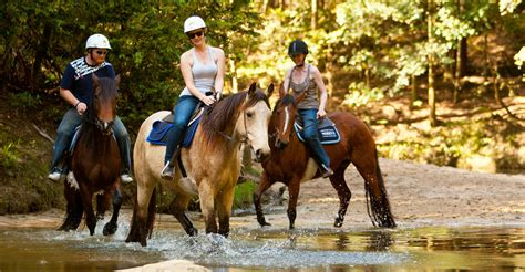 riding horse ride valley glenworth range sydney trail marmaris pony riders rides zimbabwe lessons tours adventures nsw hours private activities