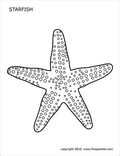 octopus  printable templates coloring pages firstpalettecom