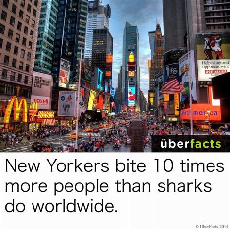 Meme Nyc Menu - you are 10x more likely to be bitten by an inhabitant of new york city than by a shark funny