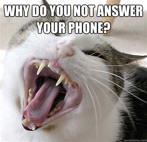 Why You Not Meme - why do you not answer your phone misc quickmeme