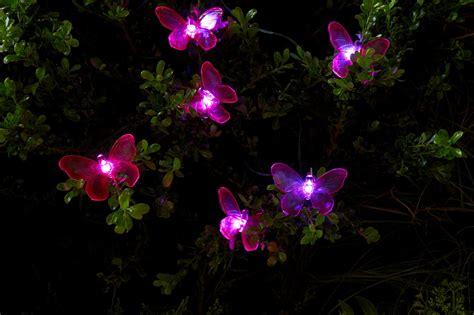 essential garden solar butterfly string lights 20 ct
