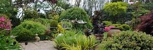Plante De Bordure : plantes vivaces pour bordures roue p pini res ~ Preciouscoupons.com Idées de Décoration