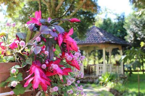 bbq corner of sapa garden bnb picture of sapa garden bed