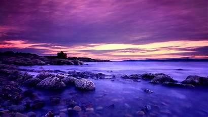 Violet Background Desktop Wallpapers Backgrounds Nature Definition