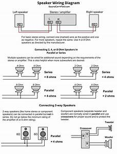 Car Tweeter Speaker Wiring Diagram