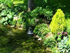 Plantes Vivaces Autour D Un Bassin : plantes du bassin ~ Melissatoandfro.com Idées de Décoration