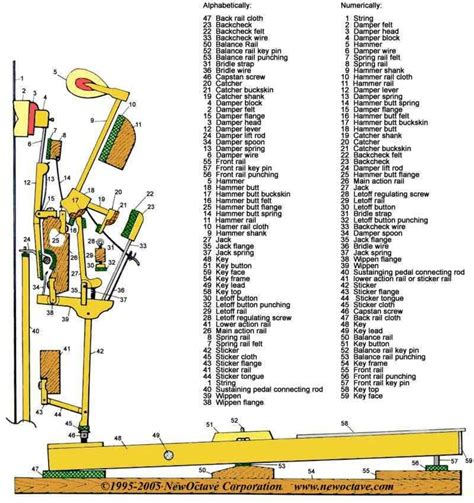Upright Piano Parts Action Diagram International