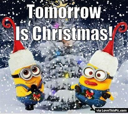 Christmas Tomorrow Animated Minion Minions Quote Quotes