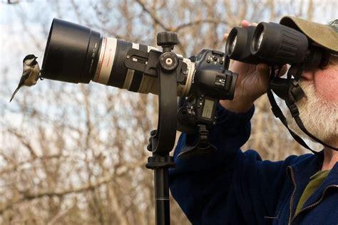 dslr cameras  wildlife photography read