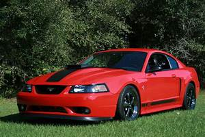 99/2001 Cobra front bumper on my Mach ? - Mustang Evolution