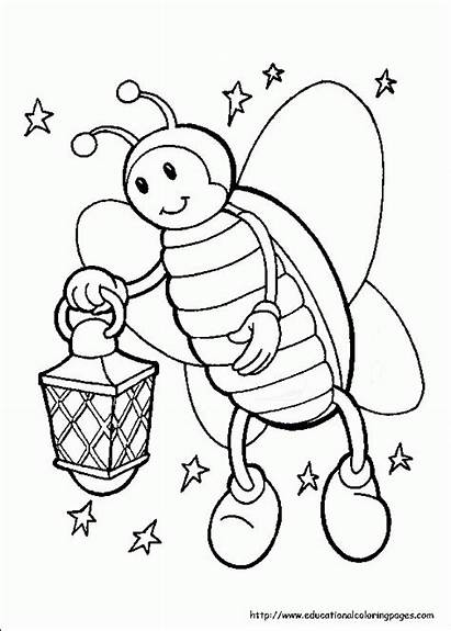 Coloring Pages Firefly Fire Printable Fly Insects