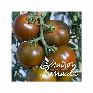 Tomate Noir De Crimée : tomate 39 noire de crimee 39 ~ Dailycaller-alerts.com Idées de Décoration