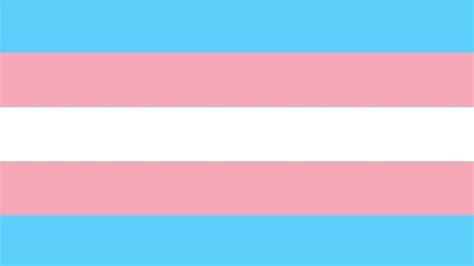 trans flag colors die besten 25 trans flag ideen auf lgbt lgbt