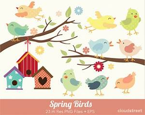 Spring Bird Clipart (49+)