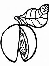Peach Coloring Colouring Fruits Tree Template Printable Recommended Mycoloring sketch template