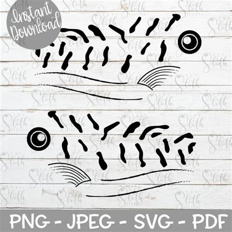 Download Fish Eye Svg Free Eyes Looking View Free Vector Graphic On Pixabay If You D Like To Help Me Keep This Site Free Please Consider Paying A Small Amount For