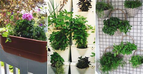 Vertical Herb Garden Ideas by 40 Diy Vertical Herb Garden Ideas To Fresh Herbs On