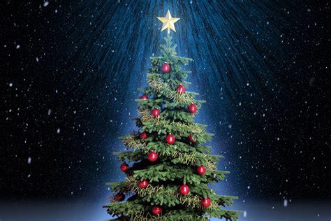 best 28 high quality christmas tree festivals