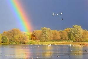 FoLLNR News: Linford Lakes Nature Reserve