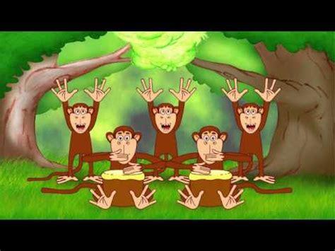 eiaie eiaio macacos dan 231 antes youtube