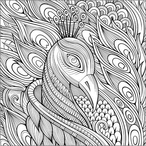 peacocks  print   peacocks kids coloring pages