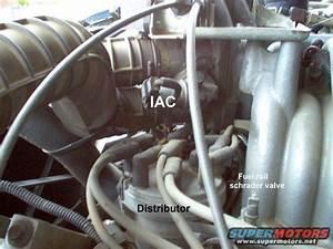 1983 Ford Bronco  U0026 39 90