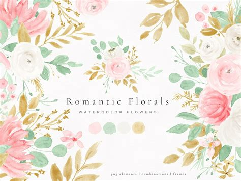 romantic florals watercolor flowers  graphics collection