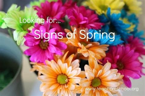 looking for signs of teach preschool 144 | Signs of Spring by Teach Preschool