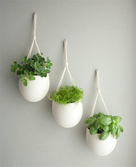 fleurs de ciboulette en cuisine mini jardinières et pots d intérieur aux herbes aromatiques