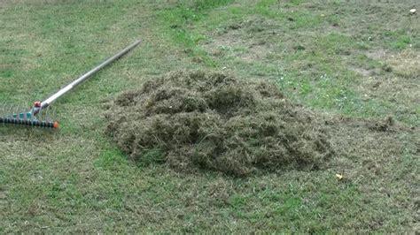 Wann Rasen Vertikutieren by Rasen Vertikutieren Mit Der Einfach Und Richtig