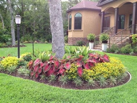 landscaping with trees ideas inexpensive landscaping ideas red flash quot caladiums and melodium landscaping front yard