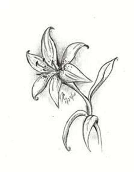 Azuzena Flower Template by 17 Best Images About Tattoo Ideas On Pinterest Free