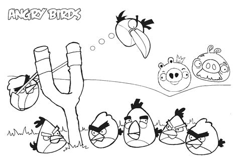angry birds coloring pages  printable coloring pages cool coloring pages