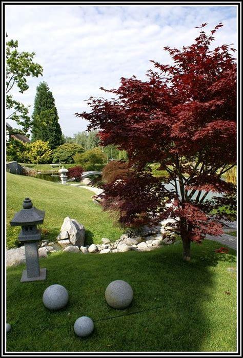Schmidt Garten Und Landschaftsbau  Garten  House Und