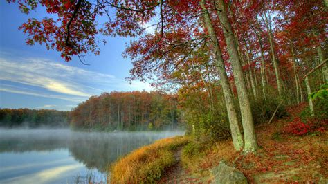 Animal Scenery Wallpaper - west virginia scenery wallpapers wallpapersafari
