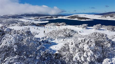 Falls Creek Alpine Resort | Snow Report
