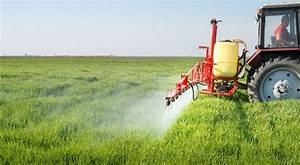Insecticide Naturel Pour La Maison : pourquoi et comment r duire les pesticides bio la une ~ Nature-et-papiers.com Idées de Décoration