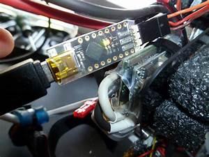 Trex 450 Pro Wiring Diagram