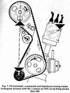 Ford Engine Firing Order