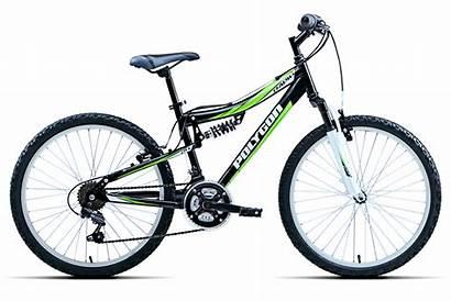 Rapid Polygon Bikes Geometry Choose Option
