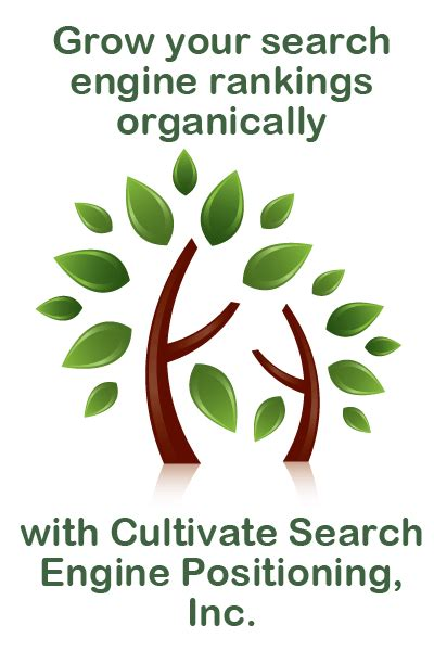 Web Search Engine Positioning - search engine optimization consultation cultivate search