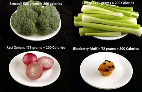 Have You Ever Wonder What 200 Calories Looks Like?